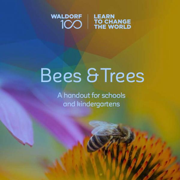 Broschüre Bees & Trees Englisch 10 Stück